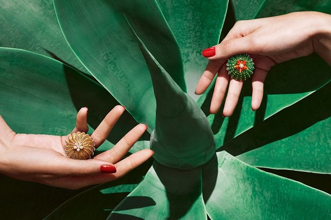 jewelry-cactus-de-cartier