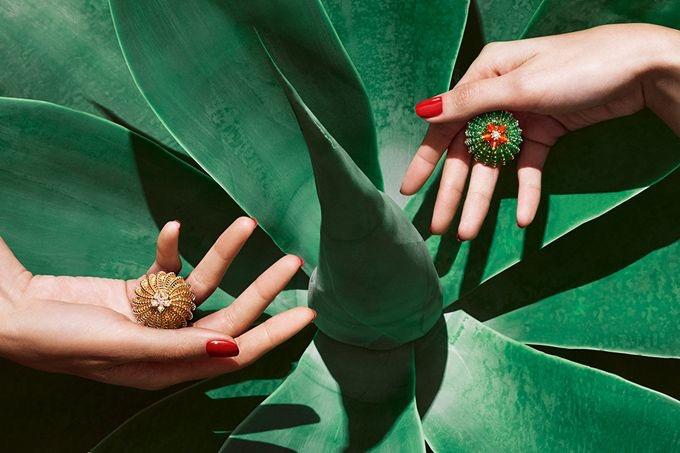 jewelry-cactus-de-cartier